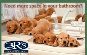 Bathroom Remodel & Repair Services