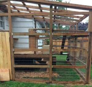 3Rs Construction Catio